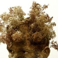 View Is Your Head Full Of Weeds?